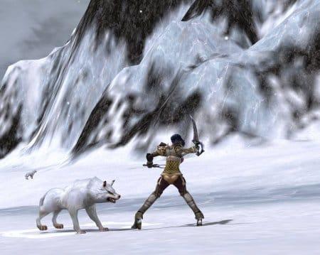 Поединок с волками в Rappelz Online