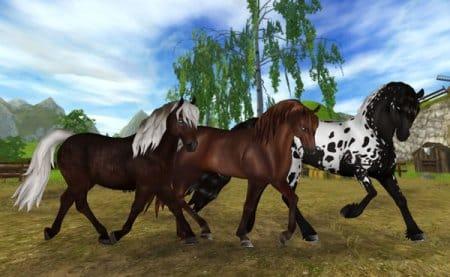 Верные друзья-лошадки